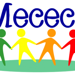 Progetto Mecec+